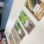 Ecotruc #1 : comment faire ses semis ?