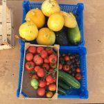 """""""Troc'é"""" vos fruits et légumes"""